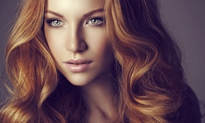 Argan Hair Salon and Spa: Cut with Option for Color Retouch or Partial Highlights at Argan Hair Salon and Spa (Up to 60% Off)