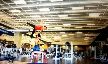 Four, Six, or Eight Weeks of Unlimited AcroYoga Classes at The Circus Conservatory (Up to 59% Off)