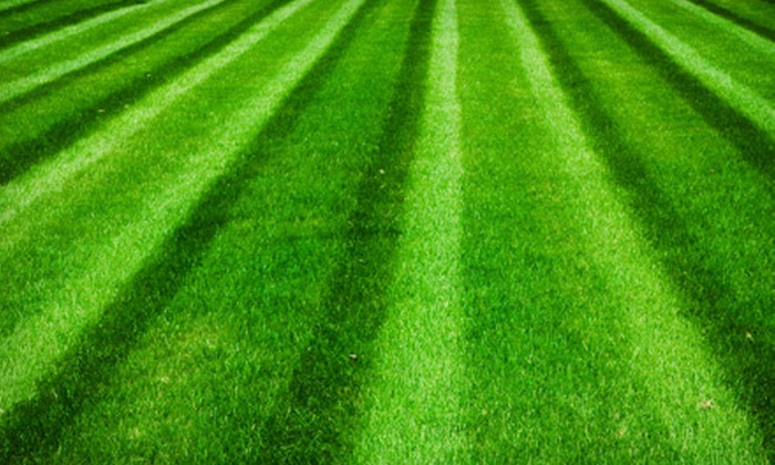 Growing Green - Sun City: Up to 6,000 Sq. Ft. of Lawn Aeration, Seeding, or Both from Growing Green (Up to 57% Off)