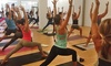 Green Monkey - Fort Lauderdale: 10 Yoga Classes or One or Two Months of Unlimited Classes at Green Monkey-Fort Lauderdale (Up to 67% Off)