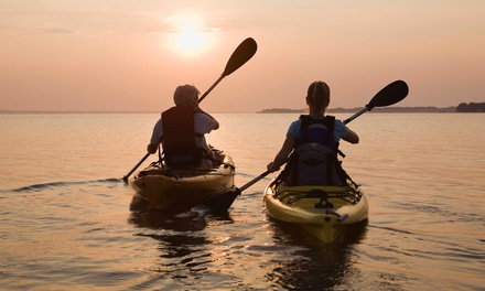 Three- or Six-Hour Single Kayak Rental for One or Two from Finseeker Guided Adventures (Up to 57%)