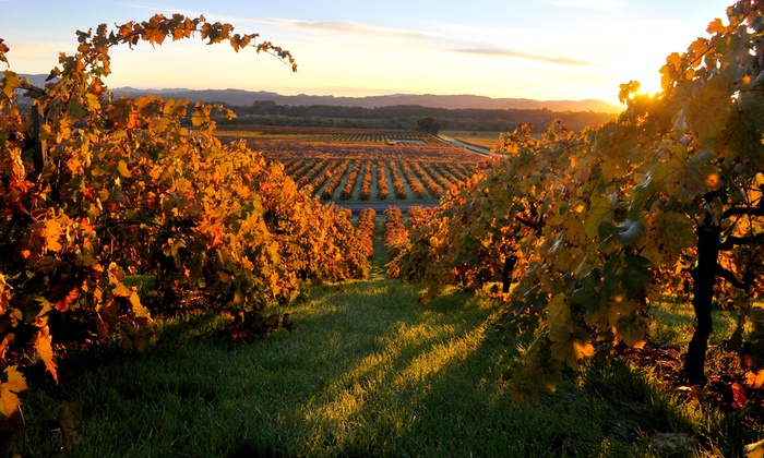 Go Limo - San Francisco: Three-Hour Limo Ride or Six-Hour Napa Valley Wine Tour for Up to Eight from Go Limo (Half Off)