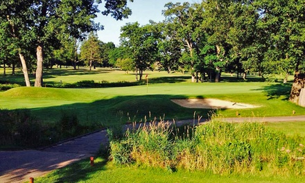 18 Holes of Golf with Carts for Two or Four at Arbor Hills Golf Club (Up to 51% Off)