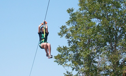 Five- or Nine-Line Zipline Tour for Two or Four at Cedar Mountain Lodge (Up to 44% Off)