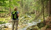 Up to 62% Off a Hidden Lakes Guided Hiking Tour