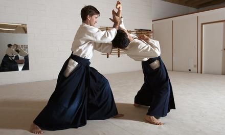 2 oder 4 Monate Aikido-Flatrate für 1 Person im Dojo von Take no sono (bis zu 83% sparen*)