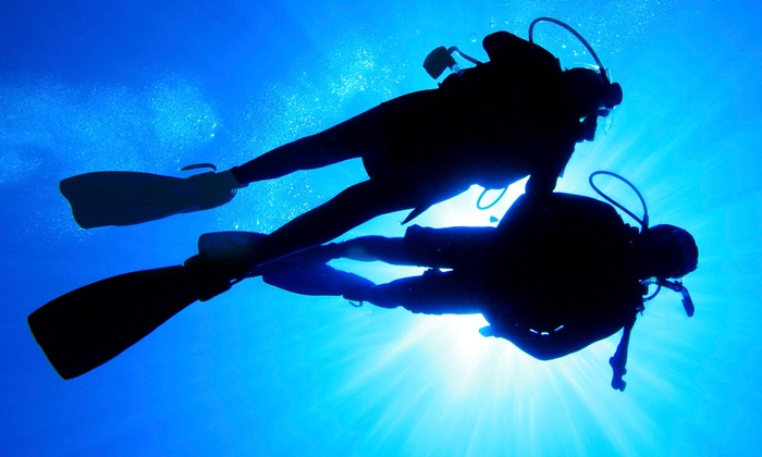 World of Scuba - Winfield Park: Scuba Diving Certification Course for One or Two or Refresher Course at World of Scuba (Up to 65% Off)