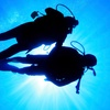 Up to 65% Off SDI Scuba Certification or Refresher Course
