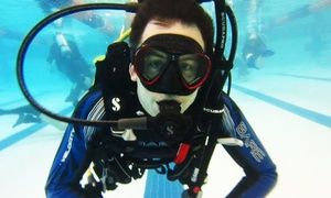 Got Air Scuba: $269 for Scuba Certification Course with Equipment Rental, Materials, and Gear Credit ($500 Value)