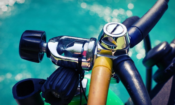 Divers Equipment - Kansas City: Try Scuba Class for Two or Four or an Open-Water Certification Course for One at Divers Equipment (Up to Half Off)