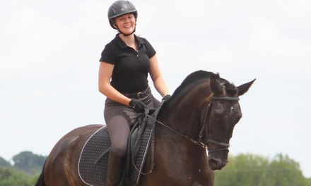Up to 60% Off horseback-riding lesson at Vanhoozer Farm