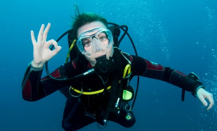 PADI Scuba-Certification Course with Optional Boat Trip from Tropical Adventures Scuba & Travel (Up to 77% Off)