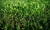 Weed Man: $25 for a Full Weed Control and Crabgrass Treatment from Weed Man (Up to $64 Value)