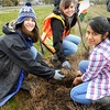 $5 or $20 Donation for Planting Native Trees