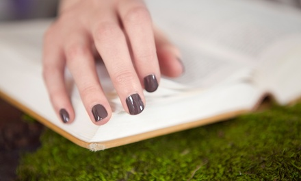 Shellac Manicure or Mani-Pedi at Wright Nails (46% Off)