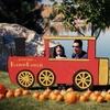 Up to 54% Off Harvest Festival Visit