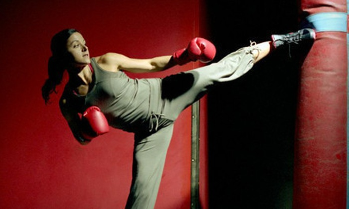 American Academy of Martial Arts - Columbia: 10, 20, or 30 Kickboxing Classes with Gloves at American Academy of Martial Arts (Up to 74% Off)