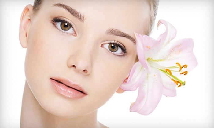 Asha Salon and Spa - Asha Salon and Spa- Plano: Herbal Facial with Optional Microdermabrasion or Three Herbal Facials at Asha Salon and Spa (Up to 65% Off)