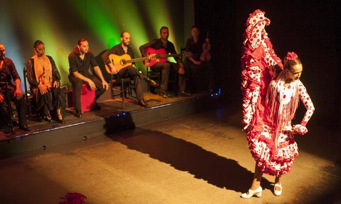 Palacio del Flamenco - Palacio Del Flamenco: Entrada al espectáculo flamenco para dos con bebida, menú especial o menú de tapas desde 38 € en Palacio del Flamenco