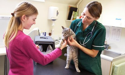 image for $28 for $60 Worth of Veterinary Services — Vet Partners <strong>Pet</strong> Hospital–Plymouth