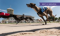 Greyhound Racing with Food, Drink, Programme and £2 Bet for Up to 10 People at Towcester Racecourse (Up to 62% Off)