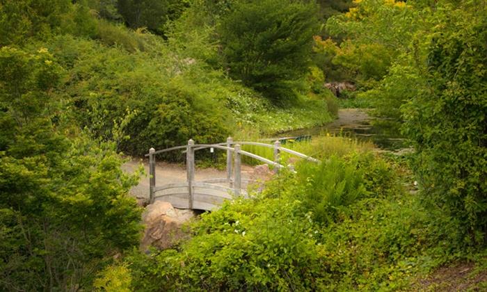 50 off quarryhill botanical garden visit - Quarryhill Botanical Garden