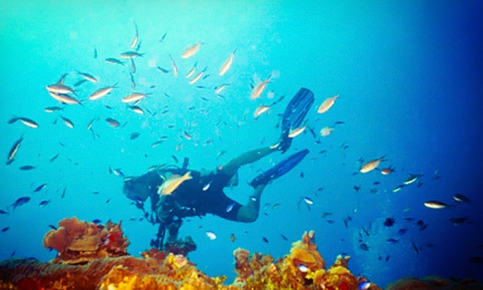 Splash Water Sport - Pittsburgh: $25 for Discover Scuba Introductory Class for Two at Splash Water Sports ($50 Value)