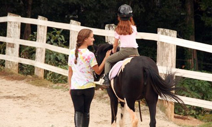 East Cobb Stables - Northeast Cobb: Two, Four, or Six Horseback-Riding Lessons at East Cobb Stables (63% Off)
