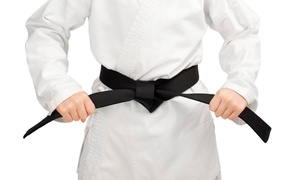 Dragon Black Belt: Four or Eight Weeks of Tae Kwon Do Classes at Dragon Black Belt (Up to 77% Off)