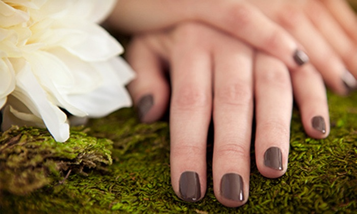 Elements Salon and Day Spa - Concord: One or Two Shellac Manicures and Essential Pedicures at Elements Salon and Day Spa (Up to 55% Off)