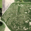 Up to 56% Off Sept. Weekend Corn-Maze at Stony Hill Farms