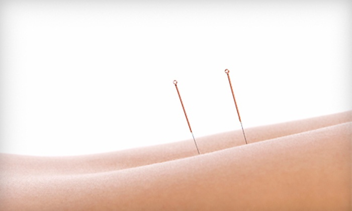 Chiropractic Therapeutics & Rehabilitation - St Vincent - Greenbriar: One, Three, or Six 60-Minute Acupuncture Treatments at Chiropractic Therapeutics & Rehabilitation (Up to 76% Off)