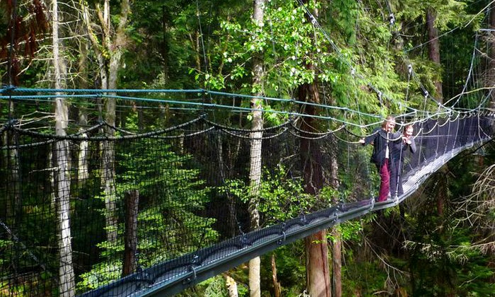 UBC Botanical Garden - Vancouver: Admission to the Greenheart Canopy Walkway for One Person or a Family at UBC Botanical Garden (Up to 50% Off)