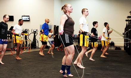 One- or Two-Month Unlimited Membership at Evolution Martial Arts Fitness (Up to 88% Off)