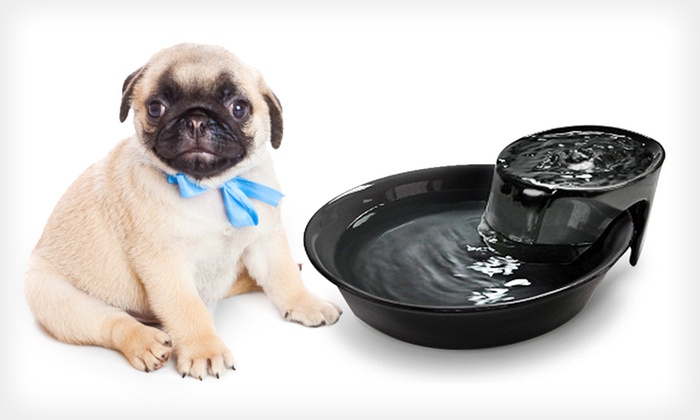 Big Max Ceramic Pet Fountain: $29 for a Big Max Ceramic Pet Fountain ($79.99 List Price)