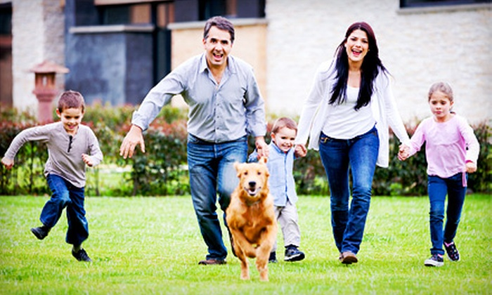 EnviroSafe Pest Control - Dallas: One Pest Control Treatment, or a Year's Worth of Pest-Control Treatments from EnviroSafe Pest Control (Up to 71% Off)