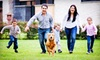 Enviro Safe Pest Control - Dallas: One Pest Control Treatment, or a Year's Worth of Pest-Control Treatments from EnviroSafe Pest Control (Up to 71% Off)