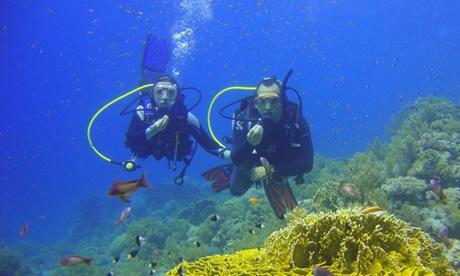 Bautismo de buceo para una o dos personas desde 24,95 € en Eco-Dive