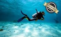 Tauchkurs Schnuppertauchen, Open Water Diver oder Advanced Open Water Diver im Tauchsportcenter ab 17,90 €