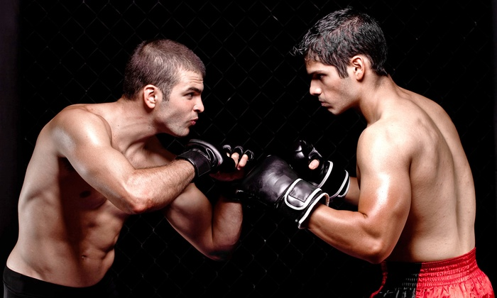 Wolf Pack MMA and Family Fitness Center - St. Augustine: One or Three Months of MMA or Martial-Arts Classes at Wolf Pack MMA and Family Fitness Center (Up to 62% Off)