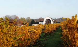 Winery Tour And Tasting For Two, Four, Or Six With Wineglasses (up To 57% Off)