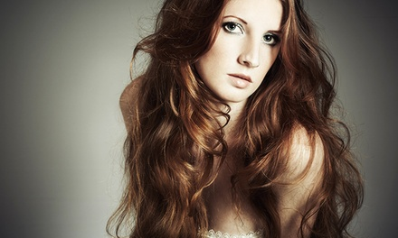 Haircut Package or Shampoos and Blowouts at Plush Hair Lounge (Up to 62% Off). Four Options Available.