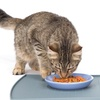 Pet Feeding Mat Made from FDA Food-Grade Silicone