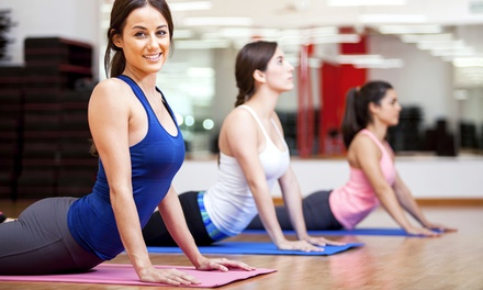 5 or 10 Yoga Classes, or 8 Weeks of Unlimited Yoga Classes for Two at McFetridge Sports Center (Up to 55% Off)