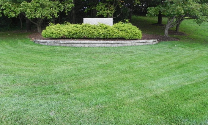 Mosaic Lawn Specialists - Multiple Locations: $30 for $60 Groupon — Mosaic Lawn Specialists
