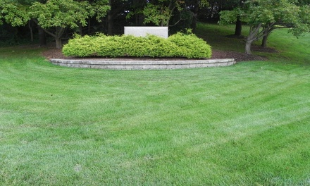 $30 for $60 Groupon — Mosaic Lawn Specialists