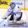 Toronto Marlies – Up to 42% Off Playoff Hockey