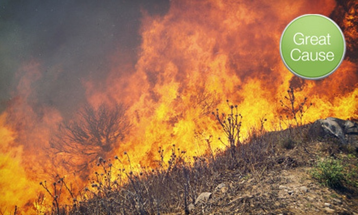 Accion in Colorado - Las Vegas: $10, $25, or $50 Donation to Help Accion in Colorado Provide Small-Business Loans in Areas Affected by Wildfires