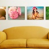 Up to 52% Off from Easy Canvas Prints