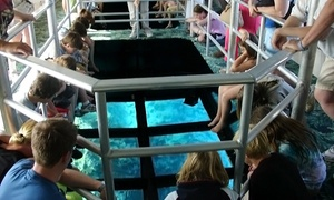 "Key Largo Princess: Two-Hour Glass-Bottomed-Boat Cruise for Two or Four on the ""Key Largo Princess"" (Up to 36% Off)"